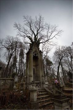 Graveyard. (Horrific Finds, Facebook) Cemetery Statues, Cemetery Headstones, Old Cemeteries, Cemetery Art, Graveyards, Angel Statues, Abandoned Buildings, Abandoned Places, Haunted Places