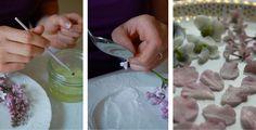 Sugared Edible Flower Petals