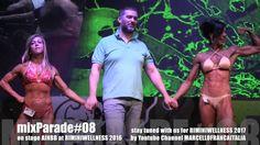 AINBB mix PARADE #08 on stage RIMINI WELLNESS 2016