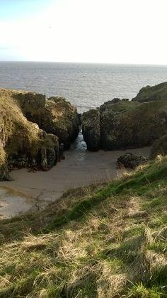Gutcher's Isle on the Solway coastal path. March 2014
