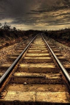 Tracks. Source plus.google.com