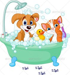 Dog and Cat  having a bath — Vector EPS #cute #cat • Available here → https://graphicriver.net/item/dog-and-cat-having-a-bath/2285579?ref=pxcr