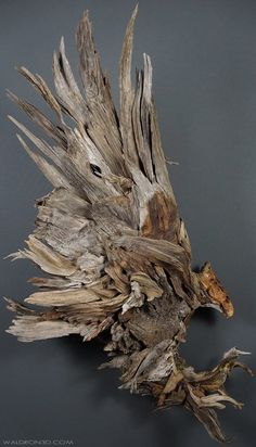 When you see Jason Waldron is able to create using simple driftwood he's found on the beach you'll be totally inspired. Art Sculpture En Bois, Driftwood Sculpture, Driftwood Art, Twig Art, Driftwood Projects, Wood Carving Art, Foto Art, Wooden Art, Nature Crafts