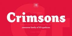 Crimsons from MyFonts.com http://www.myfonts.com/fonts/type-type/tt-crimsons/