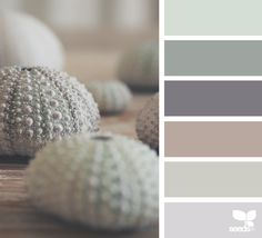 Design Seeds celebrate colors found in nature and the aesthetic of purposeful living. Design Seeds, Color Concept, Paint Color Schemes, Paint Colors, Green Colour Palette, Color Balance, Deco Design, Bedroom Colors, Gray Bedroom Color Schemes