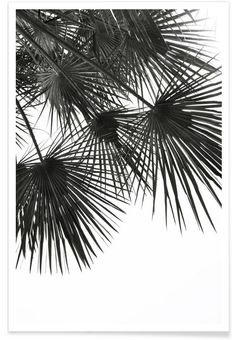 Endless Summer - Wind als Premium Poster von Studio Nahili | JUNIQE https://www.juniqe.de/endless-summer-wind-tirages-art-1234126.html