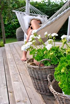 # pelargoner patio hammock, hammock patio Even though historical throughout strategy, the particular pergola may be going through somewhat of a modern day renaissance these kind of days. A fashionable open-air animal shelter devoid of walls (or. Metal Pergola, Diy Pergola, Rustic Pergola, Pergola Kits, Garden Hammock, Porche, Outdoor Living, Outdoor Decor, Simple Pleasures