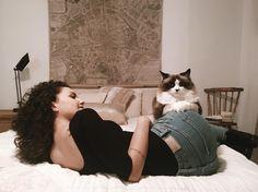 Meu Airbnb aqui em Ville de Quebec veio com 2 gatinhos no pacote 😻