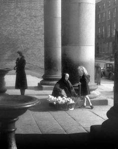 Gardener street 1945