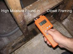 Detector One Problem All Homemakers Have To Tackle Is The Formation Of Mold In Their Houses Because Increased Air Humidity Levels