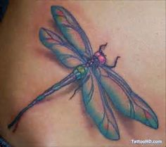 images of tribal dragonfly tattoo flash tattoos wallpaper