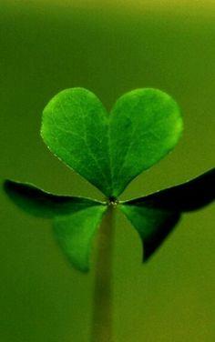 Green heart ♥