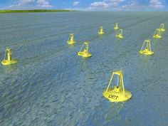 Ocean Power Technologies' proposed wave park off the coast of Oregon.     Photo courtesy of Ocean Power Technologies.