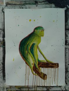 de kleurrijke aap