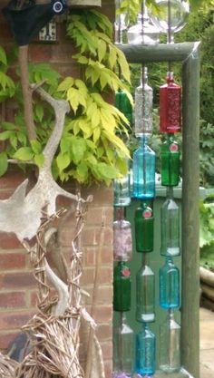 My bottle wall, love it