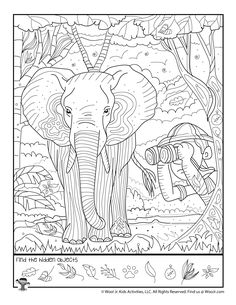 Activity Sheets For Kids, Card Games For Kids, Printable Activities For Kids, Science Activities For Kids, Worksheets For Kids, Hidden Picture Games, Hidden Picture Puzzles, Safari Jungle, Hidden Pictures Printables