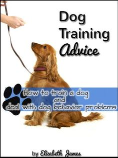 Dog Training - this book is for new dog owners or dog owners who are having dog behavior problems - train your dog to sit, come, obey commands, not be aggressive, not mark a house,how to start potty training, teach your dog not run away etc. A comprehensive list of points and chapters so you can learn to train your dog effectively.