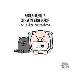 Frases Humor, I Laughed, Me Quotes, Funny Pictures, Self, Jokes, Positivity, Feelings, Comics