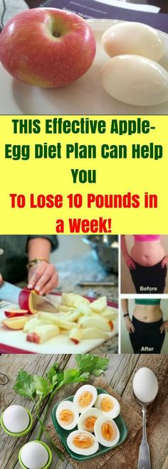 Famous Comedy Humor: This Effective Apple-Egg Diet Plan Can Help You Lose 10 Pou. - Healthy eats - Famous Comedy Humor: This Effective Apple-Egg Diet Plan Can Help You Lose 10 Pounds In A Week! Quick Weight Loss Tips, Diet Plans To Lose Weight, How To Lose Weight Fast, Lose Fat, Lose 10 Pounds In A Week, Losing 10 Pounds, 5 Pounds, Key To Losing Weight, Weight Gain