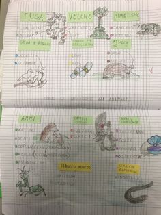 Homeschool, Science, Marco Polo, Montessori, Studio, Blog, Geography, Alphabet, Party
