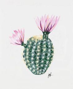 Flowering Cacti Plant Artwork