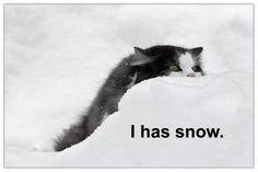 I has snow.