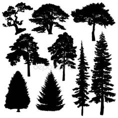 Jehličnaté stromy siluety — Stock Vektor © Rimmarii #70484661 Conifer Trees, Tree Illustration, Tree Silhouette, Jurassic World, Tree Art, Animals And Pets, Arts And Crafts, Montessori, Art Ideas