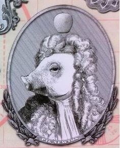 Maybe  I will be Pig Newton for Halloween!