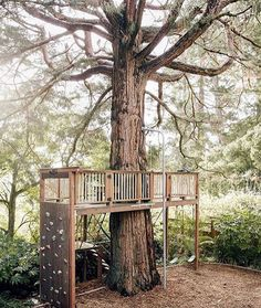 "I keep looking at this tree-house situation from @modernkids. After a weekend of play, and stretching out, and being outside -all -the -time, I was reminded how much my kids need all the time for open-ended play we can give them. While gardening, I opened up a ""hide-out"" under a bank of bushes- I cut one limb out to make an opening and a whole new world opened up for them. They brought out a blanket and their most special toys and made their own world in there, playing for hours over the…"