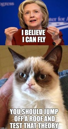 I Believe i can fly Bahahahaha Oh, Grumpy Cat Funny Animal Quotes, Cute Funny Animals, Funny Animal Pictures, Funny Cute, Cute Cats, Funny Shit, Hilarious, Grumpy Cat Quotes, Funny Grumpy Cat Memes