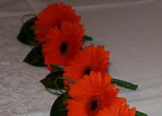 gerbera buttonholes - Google Search