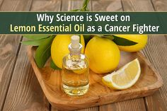 Biting into a lemon can leave a sour taste in your mouth, but discover the sweet side of lemon essential oil for stopping the spread of certain cancers.