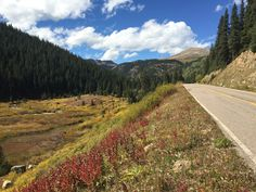 Climbing Independence Pass in the fall  http://wilderness-voyageurs.com/adventures/colorado-kick-some-pass-bike-tour/