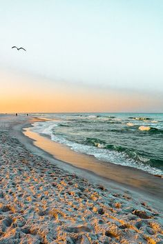 Nature Aesthetic, Beach Aesthetic, Summer Aesthetic, Travel Aesthetic, Aesthetic Backgrounds, Aesthetic Wallpapers, Nice Backgrounds, Ocean Wallpaper, Iphone Wallpaper Relax