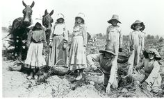 Children working on a farm with adults
