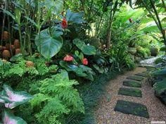 Resultado de imagem para jardins tropicais muros