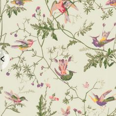 Cole & Son Wallpaper Collection ~ Country gifts and homeware ~ Cole & Son Wallpaper Collection