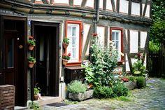 Alsfeld, Hessen - leiflight- Fotografie @ life