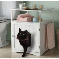 Litter box furniture for the bathroom.