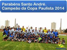 Blog do Bellotti - Esporte Clube Santo André: BI - CAMPEÃO!!!