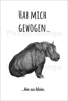 Poster Nilpferd Zu Klein