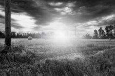 M.FUNK : PHOTOGRAPHY -> black & white