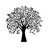 tree silhouette : Vector boom in zwart-wit Stock Illustratie