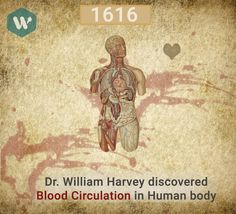 Blood Circulation in Human Body #MobileApp #DoWhistle #BloodDonor