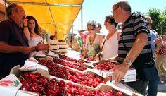 Unas 15.000 personas asisten en Milagro a la fiesta de la cereza http://www.rural64.com/st/turismorural/Unas-15000-personas-asisten-en-Milagro-a-la-fiesta-de-la-cereza-5606