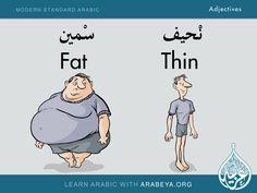 Fat - Thin