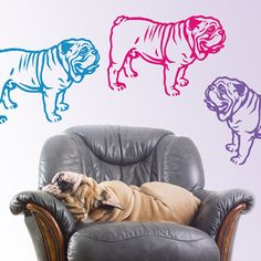 Dog Decal English Bulldog Dumpling Vinyl Sticker Decal by PSIAKREW