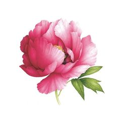 A beautiful and unique floral scented tattoo. Get your peony on. DETAILS: set of 2 scented Safe & non-toxic Printed with vegetable-based ink Made in the USA FDA-compliant and fun for all ages DESIGNER
