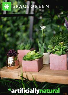 Nature, Plants, Inspiration, Biblical Inspiration, Naturaleza, Plant, Nature Illustration, Off Grid, Inspirational