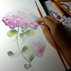 Watercolor hydrangea, work in progress. Hydrangeas, Botanical Art, Flower Art, Watercolour, Fine Art, Art Prints, Illustration, Artwork, Painting